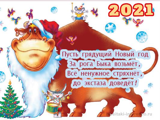 Прикольное пожелание с Новым годом Быка
